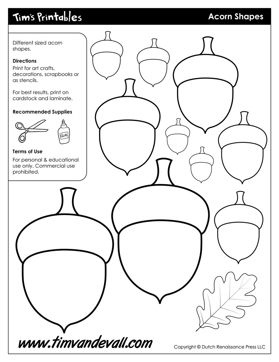 acorn pattern printable | Free Kids Crafts Free Kids Crafts