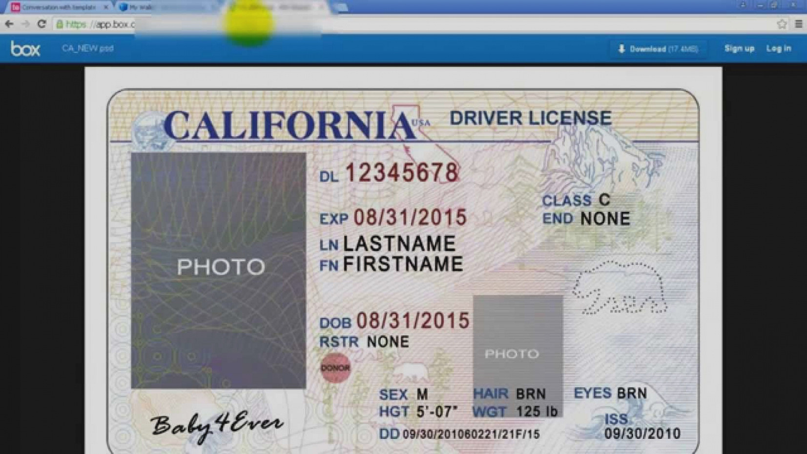 Blank Drivers License Template   Sop Examples With Blank Drivers