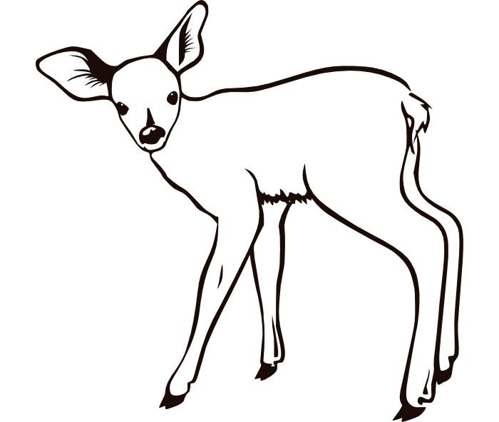 45+ Deer Templates Animal Templates | Free & Premium Templates