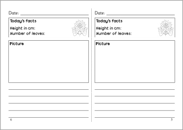 Sunflower diary template (SB4756) SparkleBox