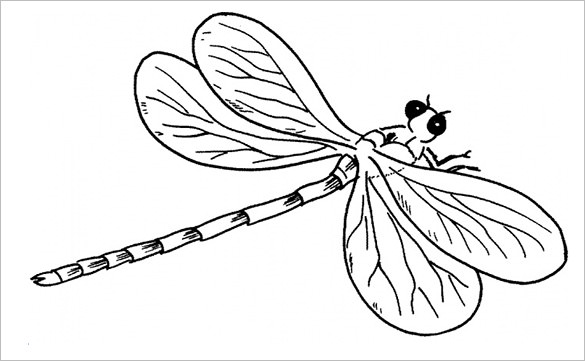 dragonfly template free April.onthemarch.co