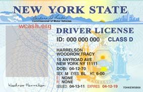Fake Drivers License Template | Best Template Idea