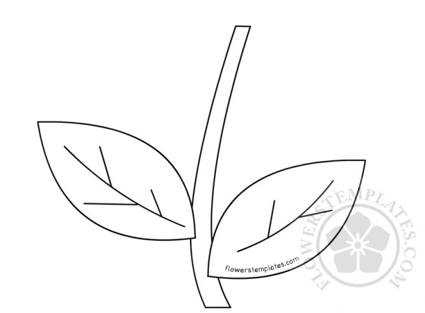 Leaf and stem pattern | Easter Template