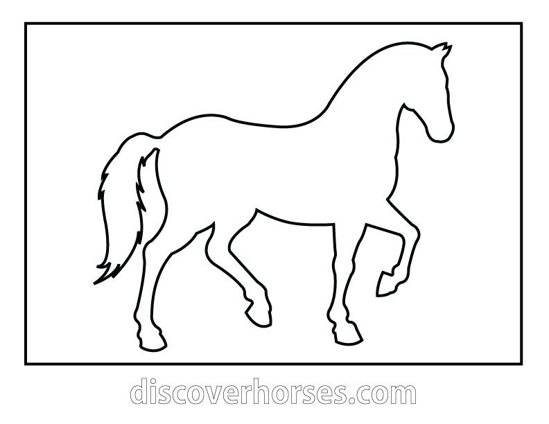 HORSE TEMPLATE can make magnets, necklaces, etc. or just use as