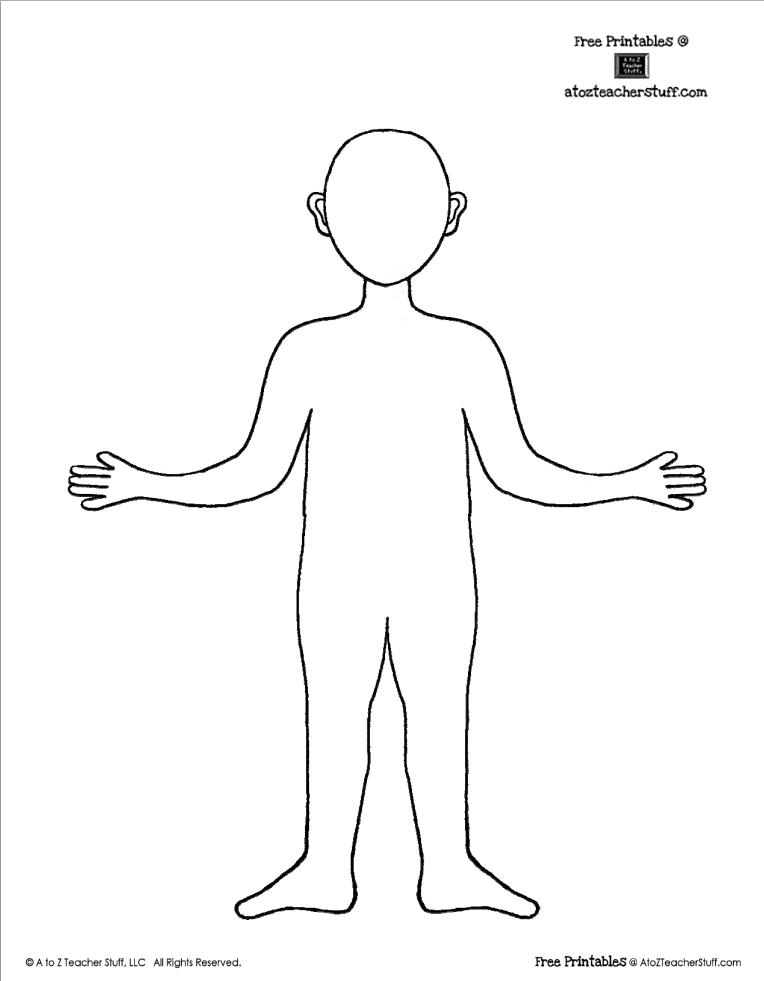 FREE Printable Body Outline Template   teaching: free printables