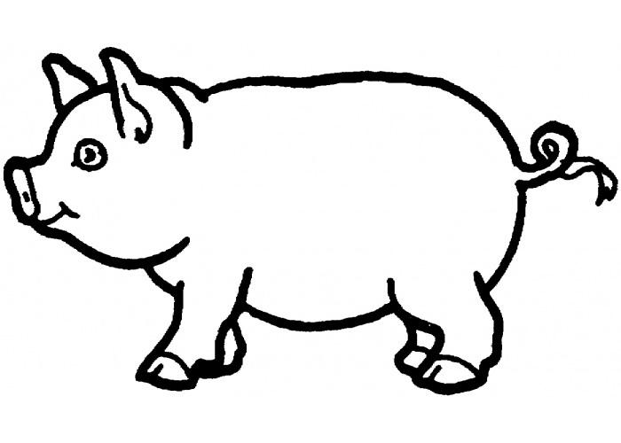 Free Craft Patterns Felt Pig Template