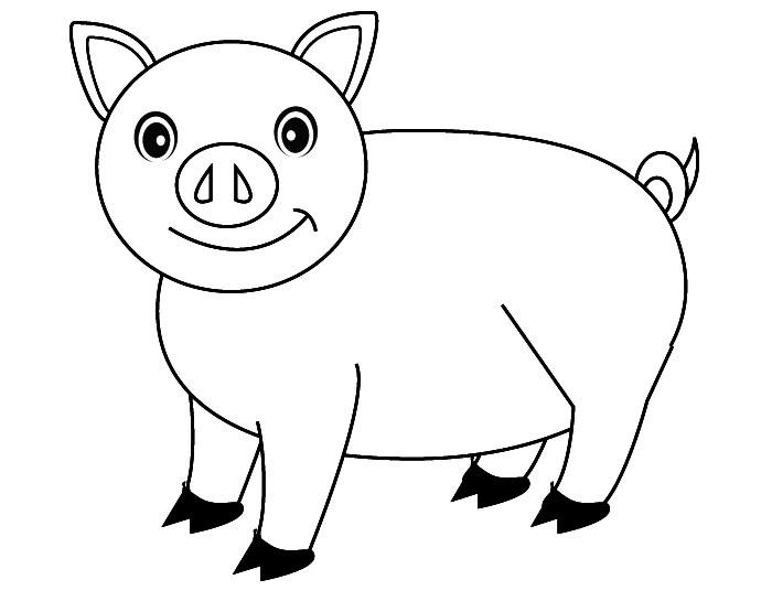 Pig Template Animal Templates | Free & Premium Templates