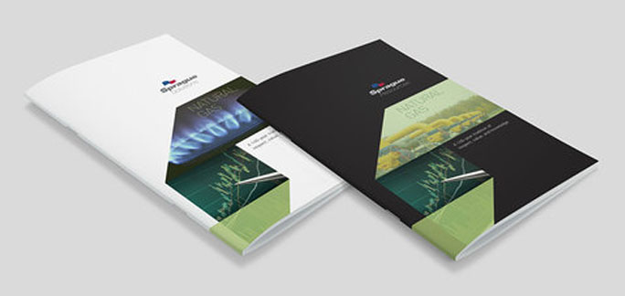 8.5 X 5.5 Booklet Template Booklets Catalogs Printing Company