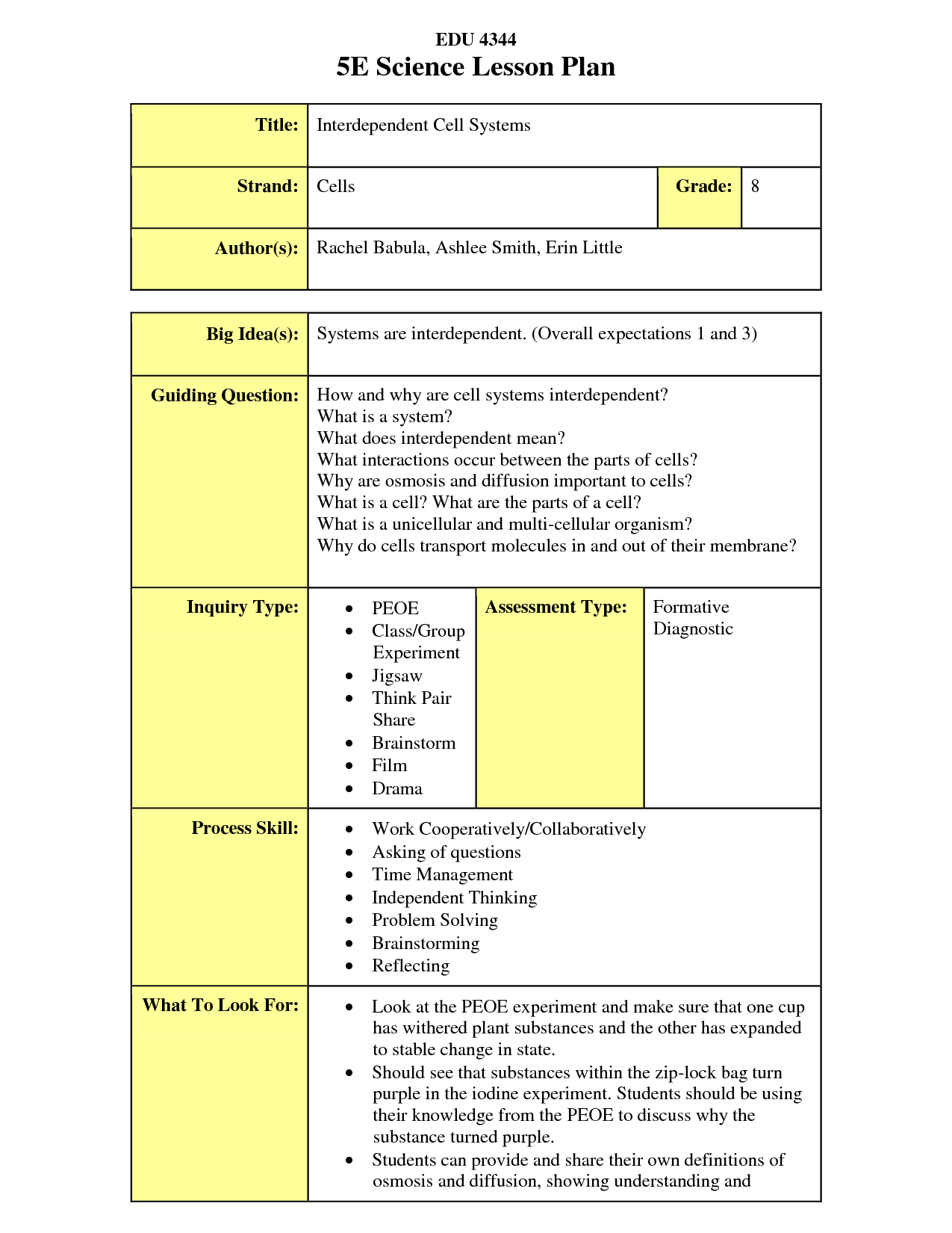 The 5E Lesson plan is an extremely useful way of planning. The