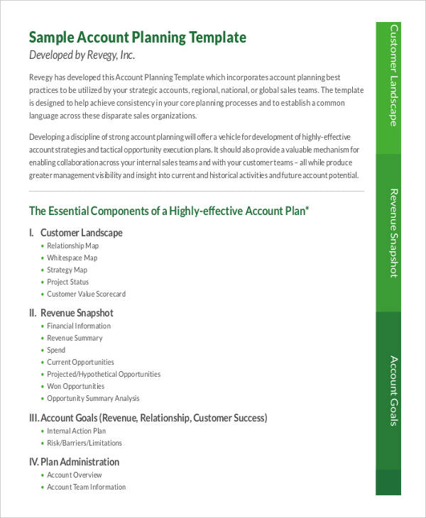7+ Strategic Account Plan Templates Free Sample ,Example Format
