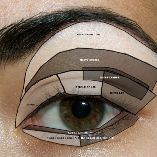 eyeshadow template? | Makeup eyes | Pinterest | Eyeshadow
