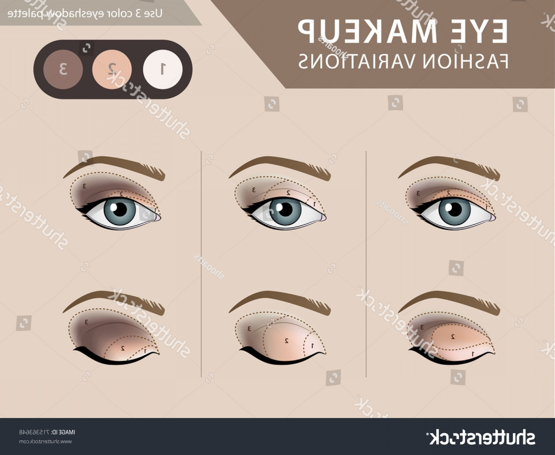 Eye Makeup Tutorial Eyeshadow Vector Template | SHOPATCLOTH