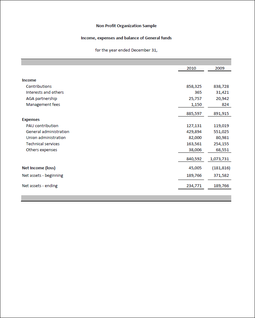Non Profit Financial Statement Template Excel | Business Templates