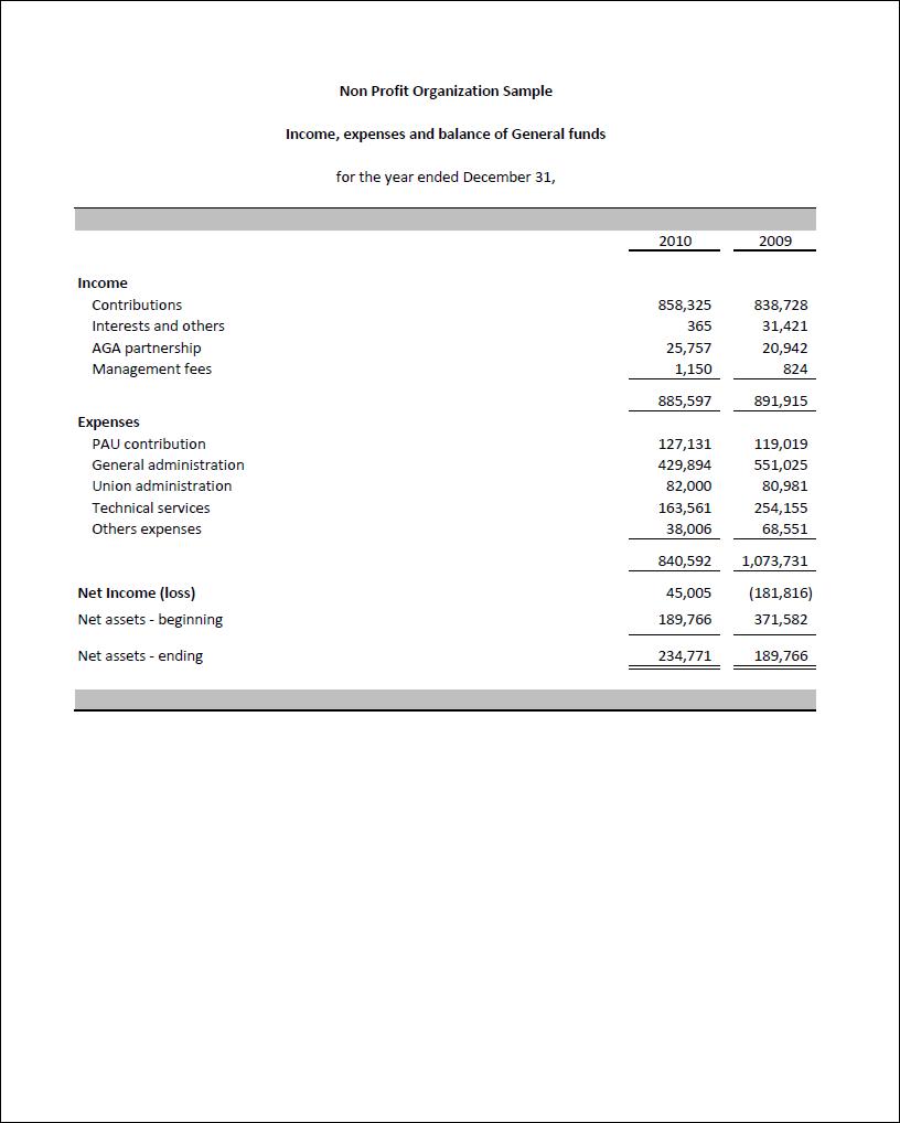 Non Profit Financial Statement Template Excel | Business Templates