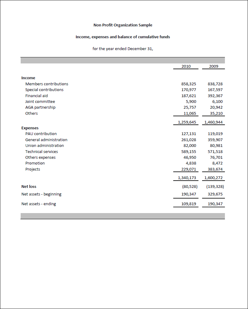 Excel FSM | NPO | Financial Statement Masters