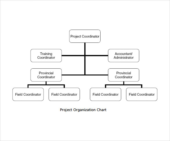 12 Project Organization Chart Templates to Download | Sample Templates