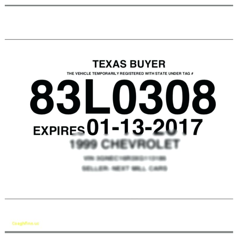 photograph regarding Printable Temporary License Plate named Texas Momentary License Template