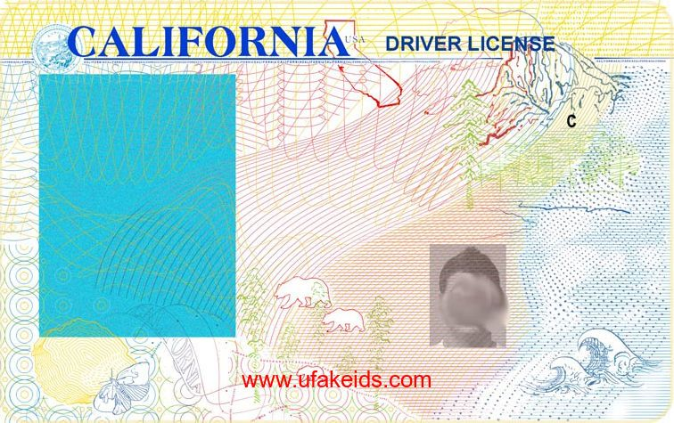 Image result for california drivers license template | Templates