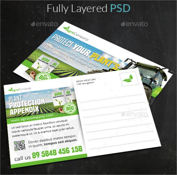 X Postcard Template Photoshop Free Blank Printable Postcards