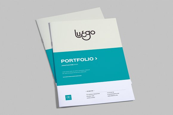 InDesign Portfolio Template ~ Brochure Templates ~ Creative Market