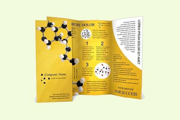 brochure science templats copy of science brochure template