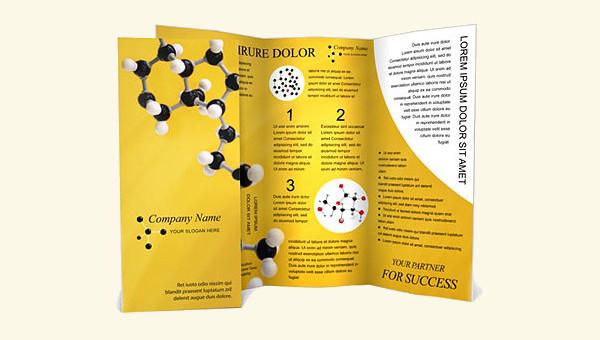 20+ Science Brochures Editable PSD, AI, Vector EPS Format